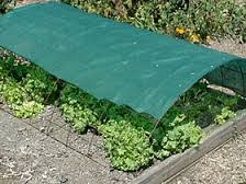 Shade Cloth Protecting Your Plants by Summer Weather Protection For Your Veggies Green Bean Connection