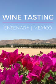 how to go wine tasting in ensenada