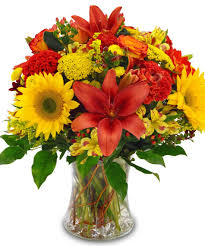most popular flowers best sellers most popular flowers top selling flowers