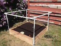 protect your garden from cats deer and rabbits my diy