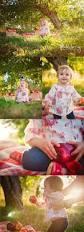 best 25 apple orchard photography ideas on pinterest happy
