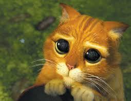 Puppy Dog Eyes Meme - film puppy dog eyes tv tropes