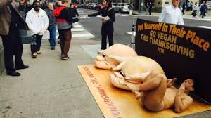 peta protests turkey by what else going