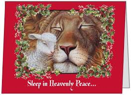 17 best christmas cards images on pinterest christmas cards