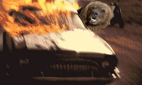 A Place Gif The Baylor Offense In Gif Form Our Daily Bears