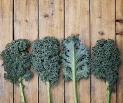 comment cuisiner le chou kale chou kale infos et recettes sur le chou kale chou kale infos