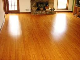 Can You Steam Mop Laminate Floors How To Clean Bamboo Floors With A Shark Or Bissell Steam Mop