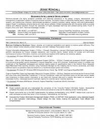 Sample Resume For Oracle Pl Sql Developer by Download Bi Developer Resume Haadyaooverbayresort Com