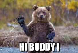 Hi Memes - bear hi buddy bear says hi meme on memegen
