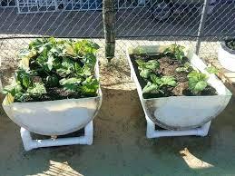 wooden barrels planters for sale garden barrels reuse plastic