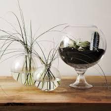 make a west elm planter look alike for 2 u2022 the budget decorator