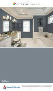 Sherwin Williams Interior Paint Colors by Best 25 Sherwin Williams Storm Cloud Ideas On Pinterest