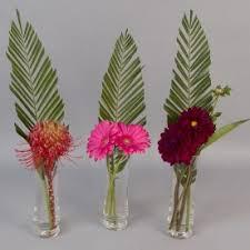 flower delivery minneapolis dahlias flower delivery in minneapolis send dahlias flowers in