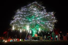 holidays come to at menifee tree lighting valley news