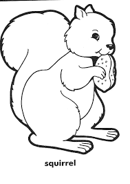 squirrel coloring pages pre activity pages alphabet abc