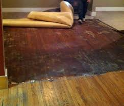 flooring how can i remove carpet adhesive from hardwood floors