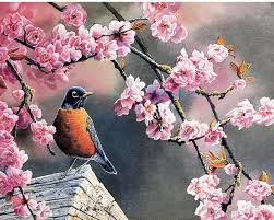 Flower And Bird - diy painting by numbers flowers and bird 16 x20 40x50cm