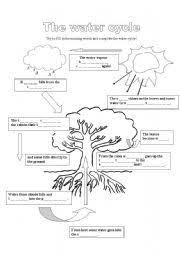 Water Cycle Worksheet Pdf Teaching Worksheets Water Cycle