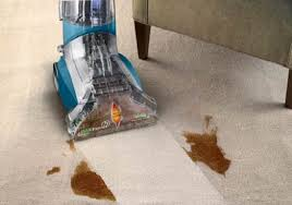 Renting A Rug Cleaner Rent Or Buy A Carpet Cleaner