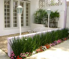 bougainvillea in flower what an entrance designed by joanne