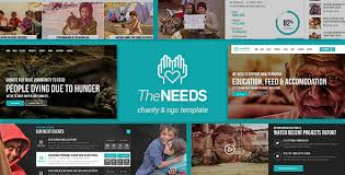 the needs nonprofit charity crowdfunding html site template by