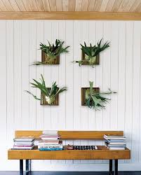Home Decor Plus Decorations Wall Mount Planters Ideas For Home Office Wall