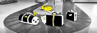 United International Baggage Allowance 6baggage Done Jpg