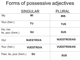 spanish possessive adjectives short form english and spanish