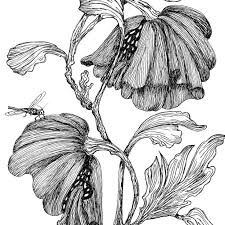 65 best pen and ink images on pinterest pens ink drawings and
