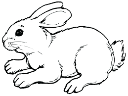 cute coloring pages for easter easter bunny coloring pages printable and bunny coloring pages to