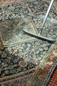 oriental rug cleaning pet urine removal lehigh valley pa