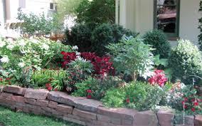 shady secrets growing successful shady gardens boulder county