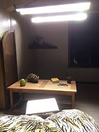 Seasonal Affective Disorder Light More Lux Light Bars For Sad Meaningness