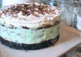 much kneaded mint chocolate chip ice cream cake