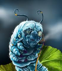 Alice In Wonderland Characters Images Caterpillar Google Search