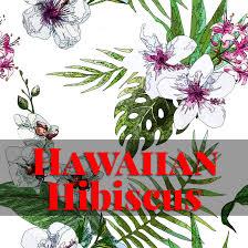 blog hawaiian heritage press hawaii u0027s finest classic and