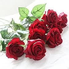 Flowers For Wedding Amazon Com Louis Garden 17
