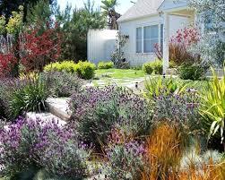front yard vegetable garden houzz
