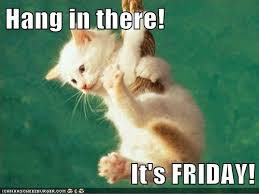 Its Friday Meme Funny - hang in there it s friday lolcats lol cat memes funny cats