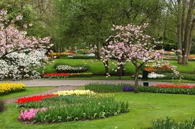 widescreen gardens beautiful and flower on nature flowers garden