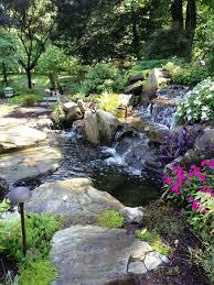 backyard ponds for sale backyard ponds ideas walsall home and