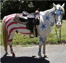 Horse Jockey Halloween Costume Parade Horses