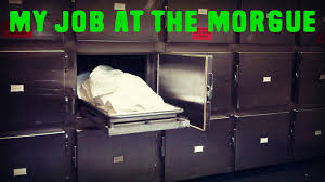 halloween horror nights jobs my job at the morgue