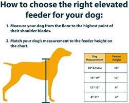 Dog Food Bowls Raised diy furniture Pinterest