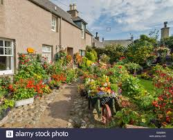 A Garden Of Flowers by Fordyce Village A Garden Full Of Flowers In Summer Aberdeenshire