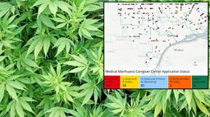 Weed Maps San Diego by Detroit Launches Interactive Online Map Tracking Medical