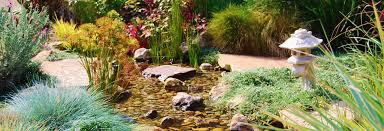 Backyard Pond Building Tips For Building A Backyard Pond Part One Sierra Pacific Design