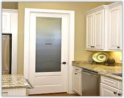 kitchen pantry door ideas kitchen pantry cabinet with glass doors home design ideas 11