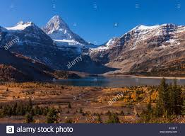 in fall mount assiniboine from lake magog in fall mount assiniboine stock