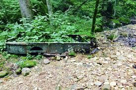 The Devils Bathtub Devil U0027s Fork Loop Trail Virginia Trails Traillink Com